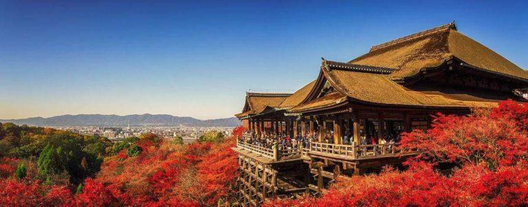京都旅遊攻略|體驗|景點|交通