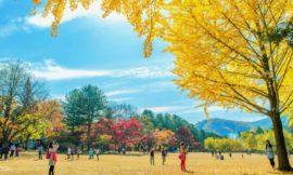 韓國景點 推薦|首爾絕對必去的9個景點!好玩又好拍