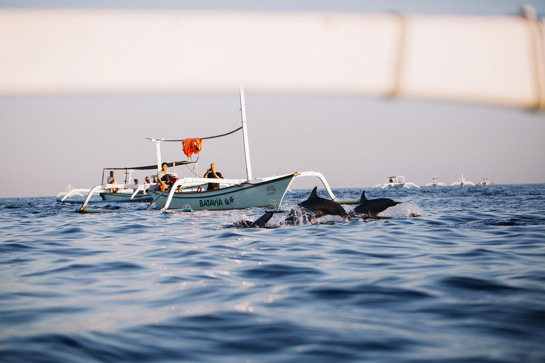 巴里島2萬5有找|峇里島5天4夜海島自助旅遊