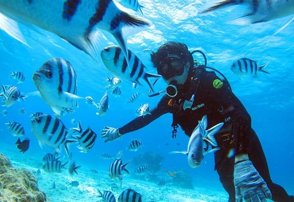沖繩自由行 攻略!一篇帶你玩遍沖繩!行程、交通、景點